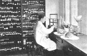 Ambergris is perfume lab