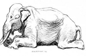elephant illustration by Charles R. Knight