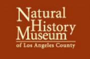 Los Angeles museum